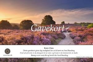 soul.dk-gavekort